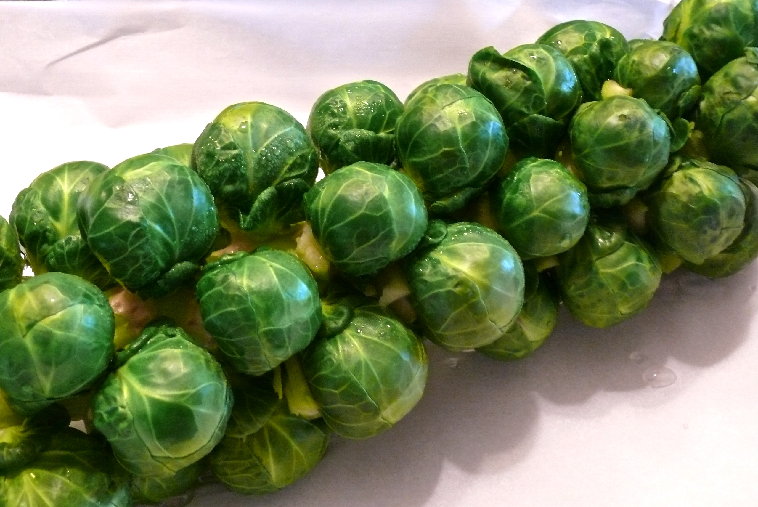 Brussels Sprouts Roasted On The Stalk | What about this?