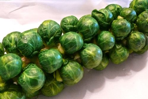 Blanched Brussels sprout stalk