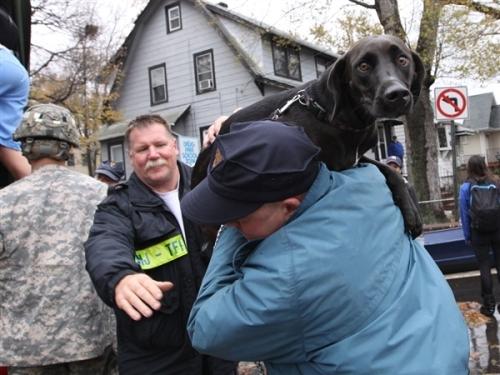 Hurricane Sandy dog rescue