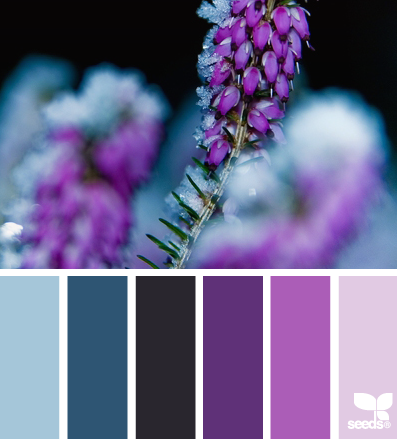 Color Palette Search
