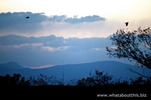 Blue Santa Fe Sunset