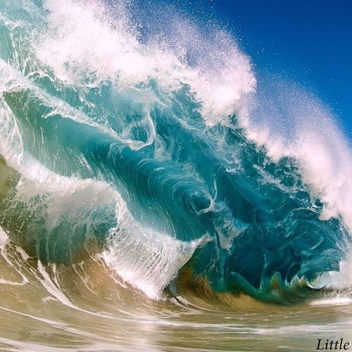 PWave Photography by Clark Little