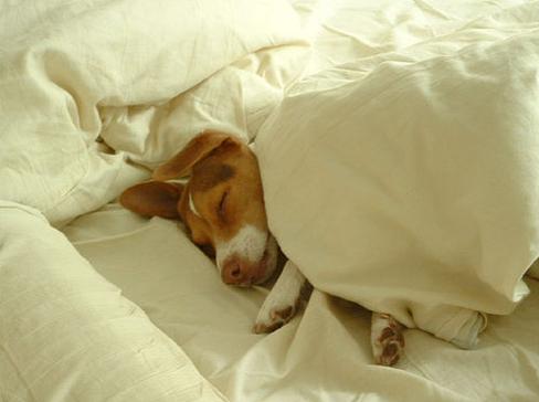 12 Simple Ways to Improve Your Sleep