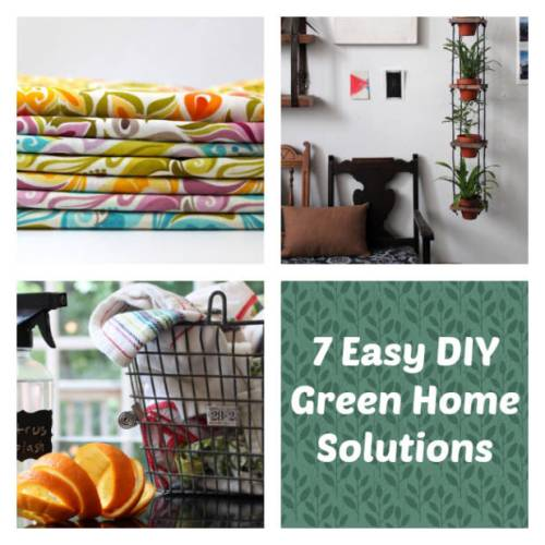 7 Easy DIY Green Home Solutions