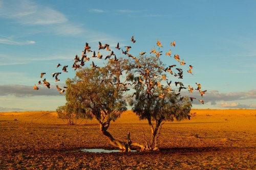National Geographic: Best of October Photos
