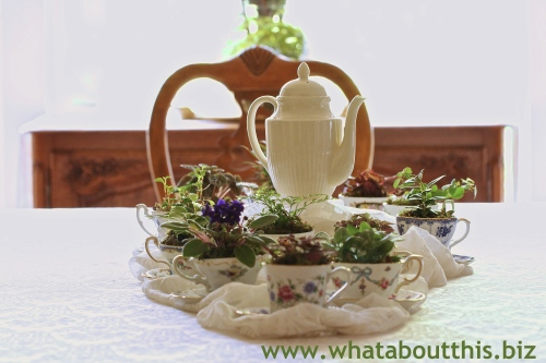 Teacup Centerpiece