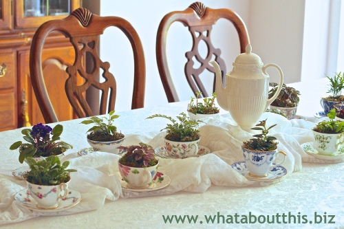 Teacup Floral Centerpiece